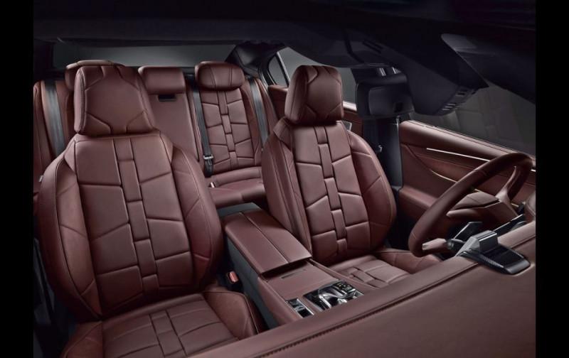 Photo 8 de l'offre de DS DS 9 HYBRID E-TENSE 225CH RIVOLI+ à 60500€ chez YM Automobiles